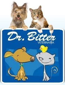 Dr Bitter Veterinarian in Escazu Costa Rica